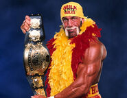Hulk-hogan-02 display image