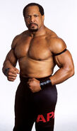 Ron Simmons (11)