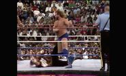 WrestleMania VIII.00019