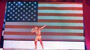 WrestleMania 21.36