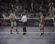 WWF The Wrestling Classic.00015
