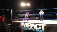 3-15-13 TNA House Show 1