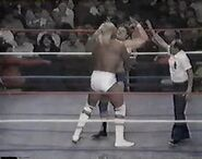 WWF The Wrestling Classic.00024