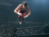 SummerSlam 2002.5