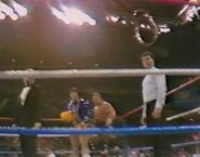1.9.88 WWF Superstars.00002