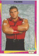 1995 WWF Wrestling Trading Cards (Merlin) Pierre 13