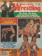 Victory Sports Wrestling - Summer 1987
