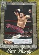 2002 WWF All Access (Fleer) Matt Hardy 96