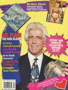 WCW Magazine - April 1994