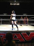 5-4-13 WWE 1
