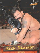 1999 WCW Embossed (Topps) Rick Steiner 5
