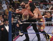 Royal Rumble 1990.3