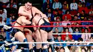 Royal Rumble 1989.14