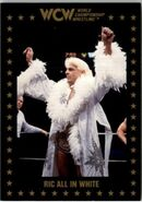 1991 WCW Collectible Trading Cards (Championship Marketing) Ric Flair All In White 56