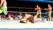 SummerSlam 1989-15