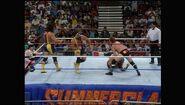 SummerSlam 1993.00012
