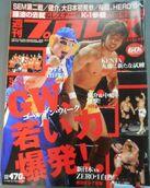 Weekly Pro Wrestling 1315