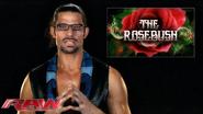 Adam-rose