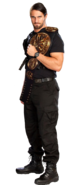 Seth rollins tag team champion by the rocker 69-d67te10