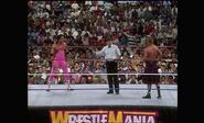 WrestleMania VIII.00013