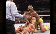 Hogan vs. Warrior 15