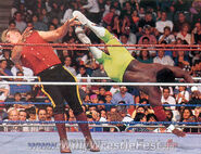 Royal Rumble 1991.14