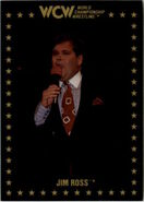 1991 WCW Collectible Trading Cards (Championship Marketing) Jim Ross 15