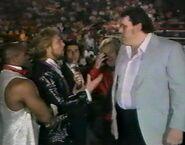 1.9.88 WWF Superstars.00013