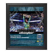 Naomi Elimination Chamber 2017 15 x 17 Framed Plaque w Ring Canvas