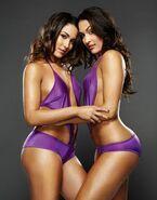 Bella-Twins-the-bella-twins-15131966-458-586