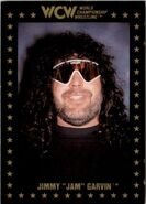 1991 WCW Collectible Trading Cards (Championship Marketing) Jimmy Jam Garvin 72