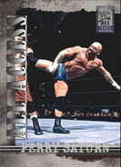 2002 WWF All Access (Fleer) Perry Saturn 44