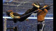 WrestleMania 25.25