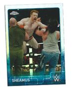 2015 Chrome WWE Wrestling Cards (Topps) Sheamus 64