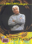 2002 WWE Absolute Divas (Fleer) Ric Flair 60