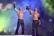 The Young Bucks TNA Profile