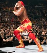 WrestleMania 21.37