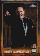2015 Chrome WWE Wrestling Cards (Topps) Bruno Sammartino 80