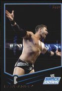 2013 WWE (Topps) Fandango 63