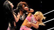 WWE WrestleMania Revenge Tour 2014 - Rotterdam.6
