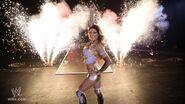WrestleMania Tour 2011-Birmingham.1