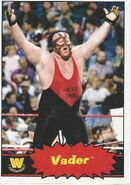 2012 WWE Heritage Trading Cards Vader 109