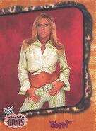 2002 WWE Absolute Divas (Fleer) Terri 17