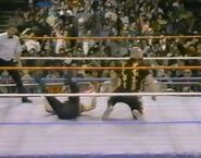 1.16.88 WWF Superstars.00008