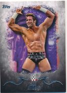 2016 Topps WWE Undisputed Wrestling Cards Zack Ryder 40