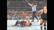 Survivor Series 1994.00019