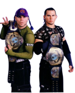 The Hardy Boys WWF