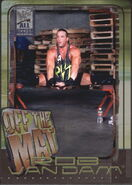 2002 WWF All Access (Fleer) Rob Van Dam 73