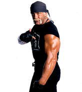 Hollywood hulk hogan photostudio by windows8osx-d5i1r77