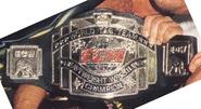 ECW Tag 2nd